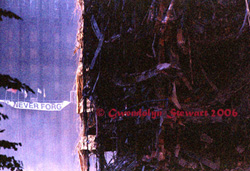 Photograph of the World Trade Center after 9/11,  photographed by Gwendolyn Stewart, c. 2009, All Rights Reserved