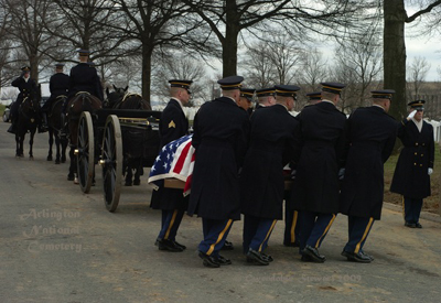 Full Military Honors at  Arlington National Cemetery Photographed by Gwendolyn Stewart, c. 2009; All Rights Reserved