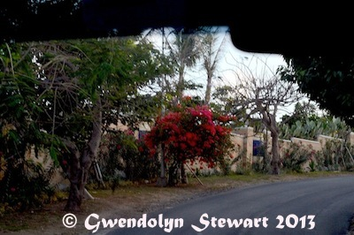 TROPICAL TRAFFIC & EN ROUTE TO NUSA DUA Photographed by Gwendolyn Stewart c.  2013; All Rights Reserved