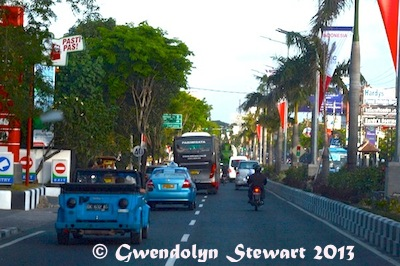 ON THE ROAD FROM BALI AIRPORT Photographed by Gwendolyn Stewart c.  2013; All Rights Reserved