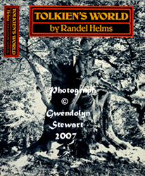 Cover Photograph of  RANDEL HELMS' TOLKIEN'S WORLD by GWENDOLYN STEWART, c. 2009; All Rights Reserved
